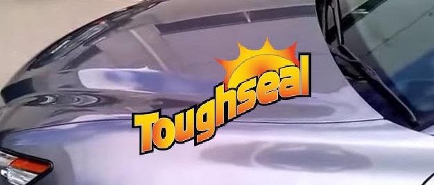 toughseal mirror shine paint protection bendigo